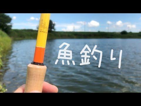 魚釣り 調整池で何が釣れるんだ!?