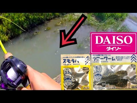 ダイソースモラバ+クロ―ワーム付けて釣ってみました。