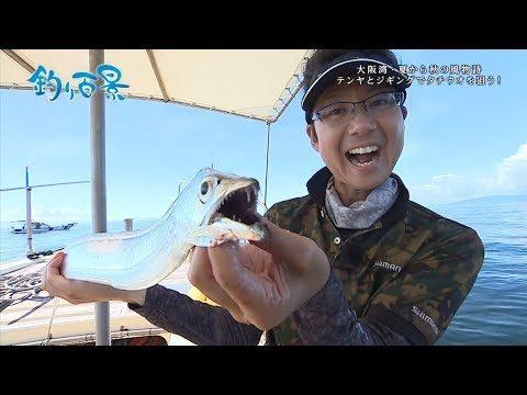 【釣り百景】#306 大阪湾・夏から秋の風物詩 テンヤとジギングでタチウオを狙う!